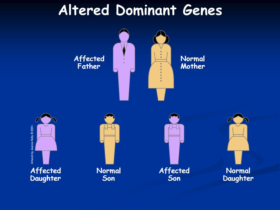Altered Dominant Genes Affected Daughter Normal Daughter Normal Son Normal Mother Affected Father Affected Son