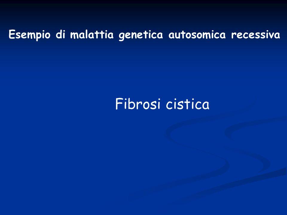 Esempio di malattia genetica autosomica recessiva Fibrosi cistica