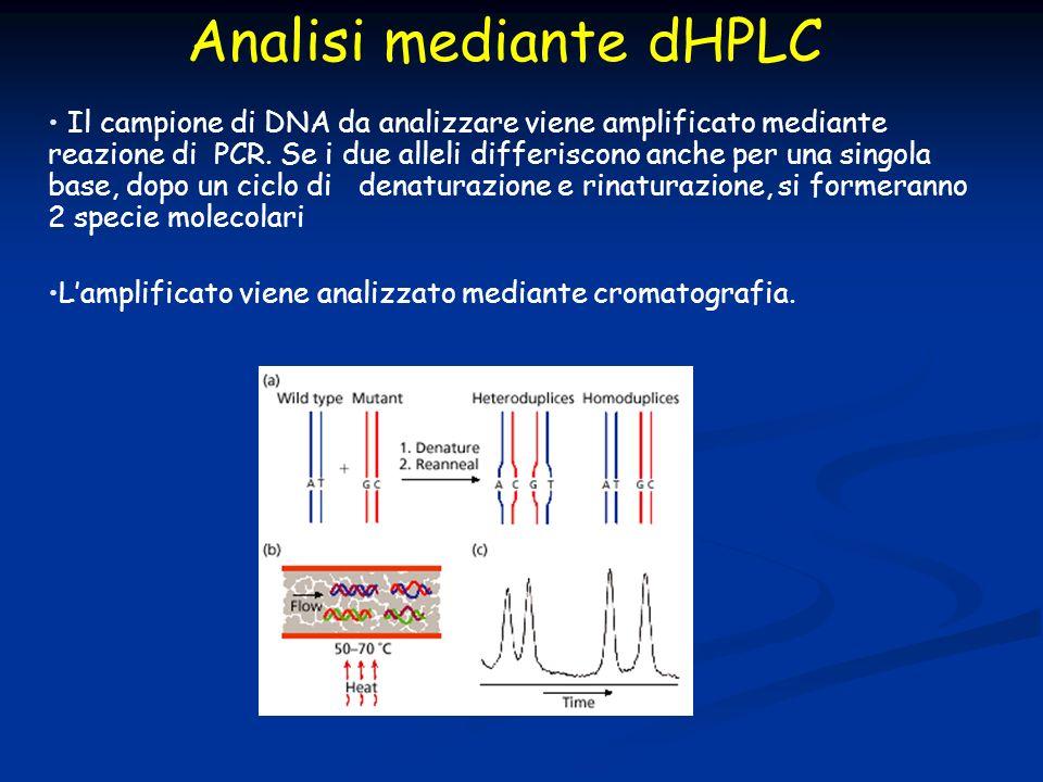Il campione di DNA da analizzare viene amplificato mediante reazione di PCR. Se i due alleli differiscono anche per una singola base, dopo un ciclo di