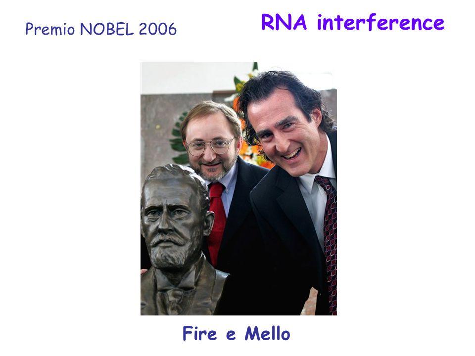 RNA interference Premio NOBEL 2006 Fire e Mello