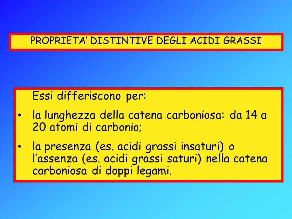 PROPRIETA DISTINTIVE DEGLI ACIDI GRASSI Essi differiscono per: la lunghezza della catena carboniosa: da 14 a 20 atomi di carbonio; la presenza (es. ac