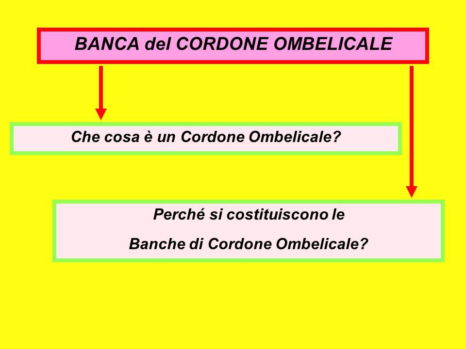 BANCA del CORDONE OMBELICALE Perché si costituiscono le Banche di Cordone Ombelicale? Che cosa è un Cordone Ombelicale?
