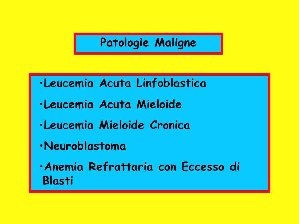 Patologie Maligne Leucemia Acuta Linfoblastica Leucemia Acuta Mieloide Leucemia Mieloide Cronica Neuroblastoma Anemia Refrattaria con Eccesso di Blast