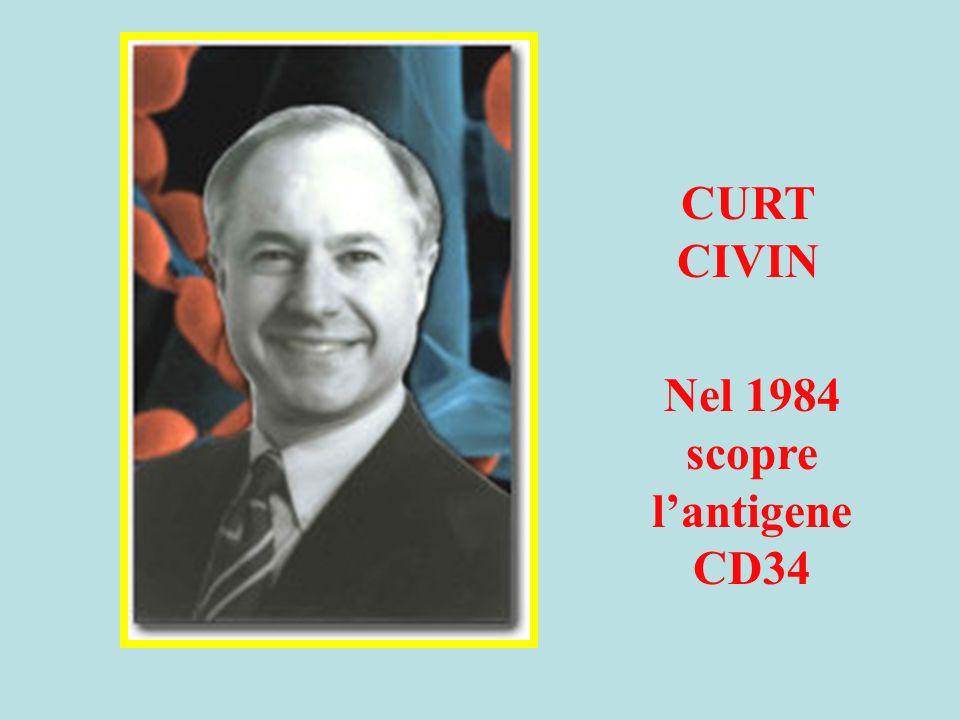 CURT CIVIN Nel 1984 scopre lantigene CD34