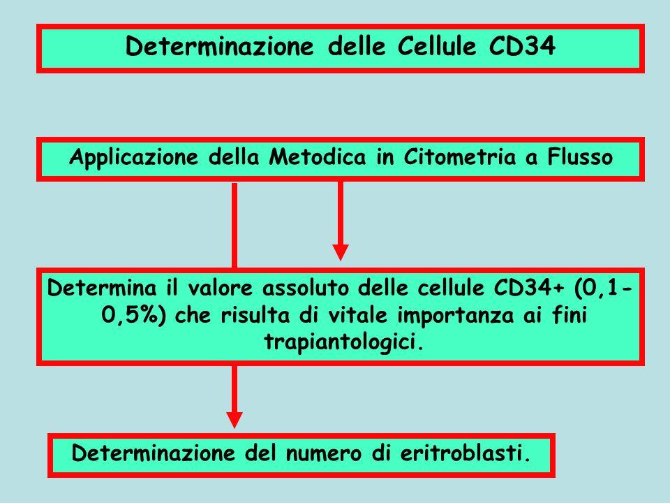 Determinazione delle Cellule CD34 Applicazione della Metodica in Citometria a Flusso Determina il valore assoluto delle cellule CD34+ (0,1- 0,5%) che