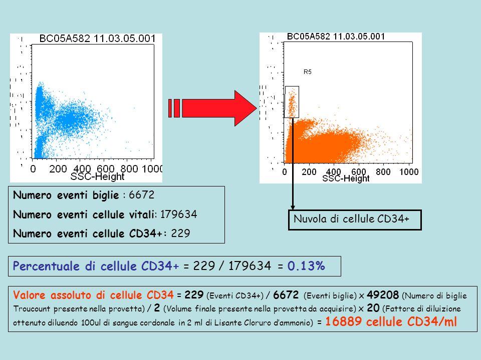 Nuvola di cellule CD34+ Numero eventi biglie : 6672 Numero eventi cellule vitali: 179634 Numero eventi cellule CD34+: 229 Percentuale di cellule CD34+