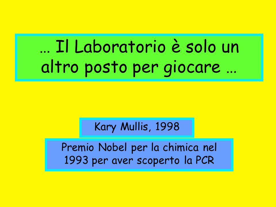 … Il Laboratorio è solo un altro posto per giocare … Kary Mullis, 1998 Premio Nobel per la chimica nel 1993 per aver scoperto la PCR