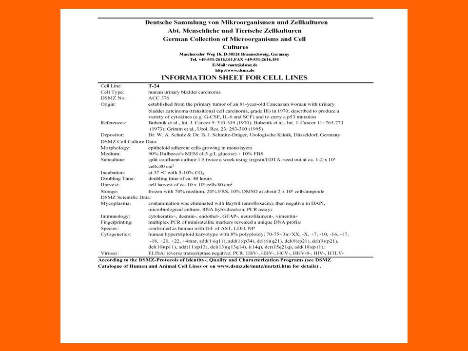 PROTOCOLLO GRATAMA JW et al, J.Immunol. Methods, 2000 Anne M.