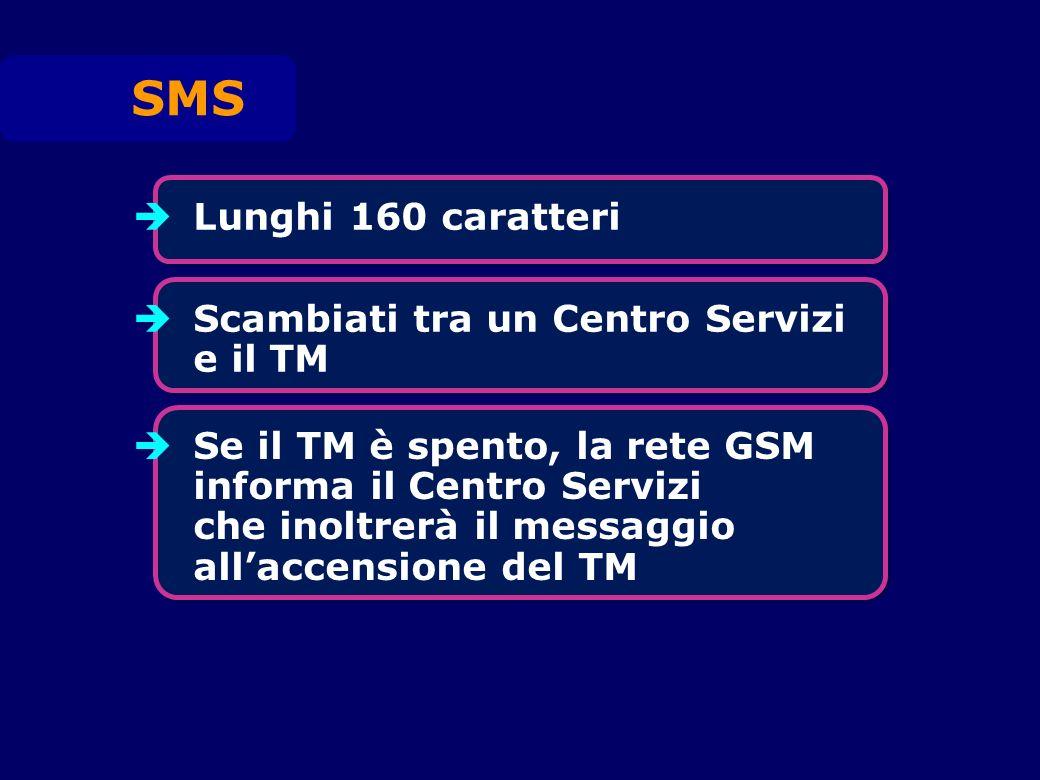 Lunghi 160 caratteri SMS Scambiati tra un Centro Servizi e il TM Se il TM è spento, la rete GSM informa il Centro Servizi che inoltrerà il messaggio allaccensione del TM