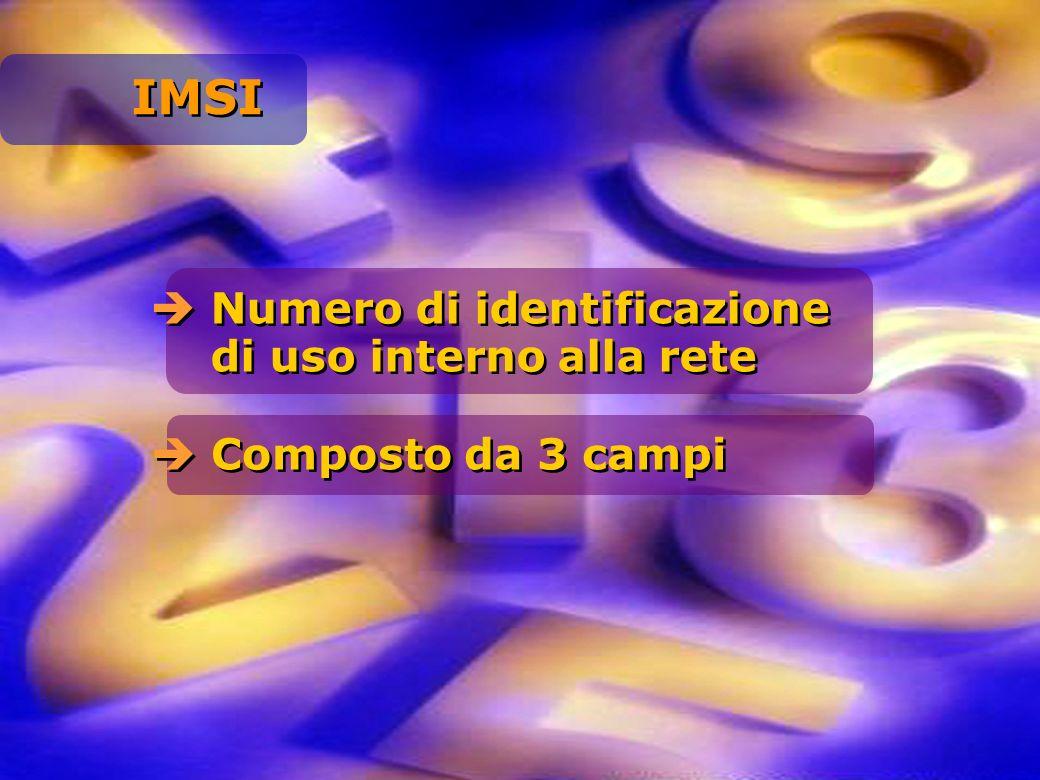 Numero di identificazione di uso interno alla rete Composto da 3 campi IMSI