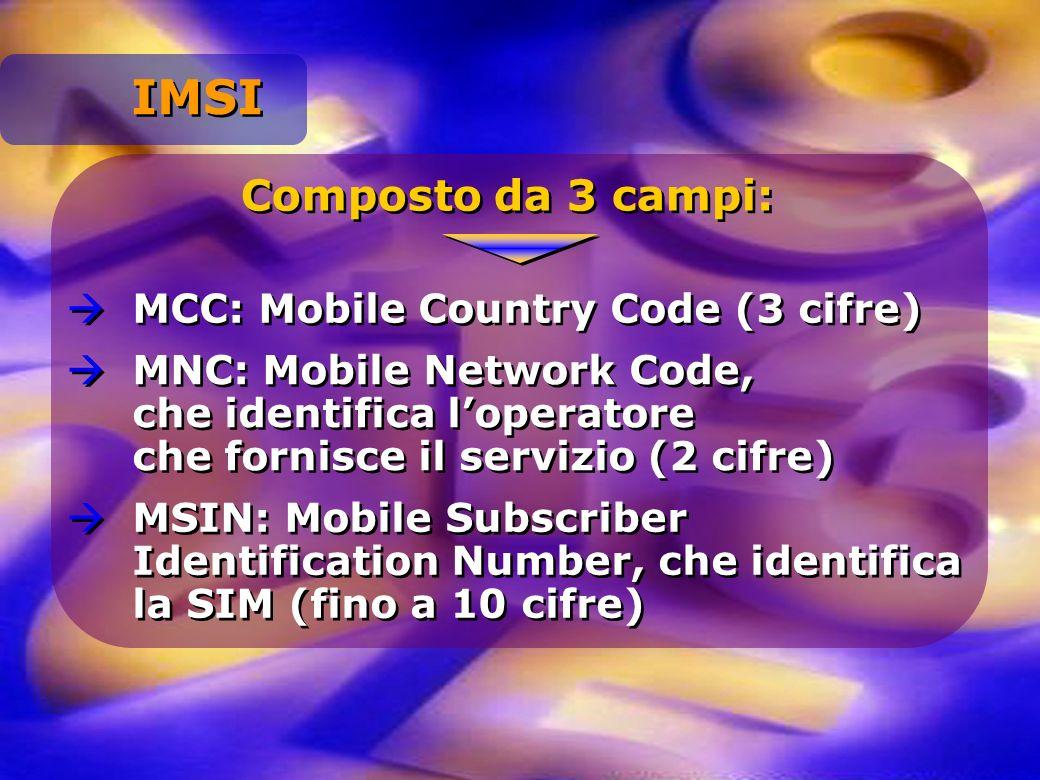 Composto da 3 campi: MCC: Mobile Country Code (3 cifre) MNC: Mobile Network Code, che identifica loperatore che fornisce il servizio (2 cifre) MSIN: M