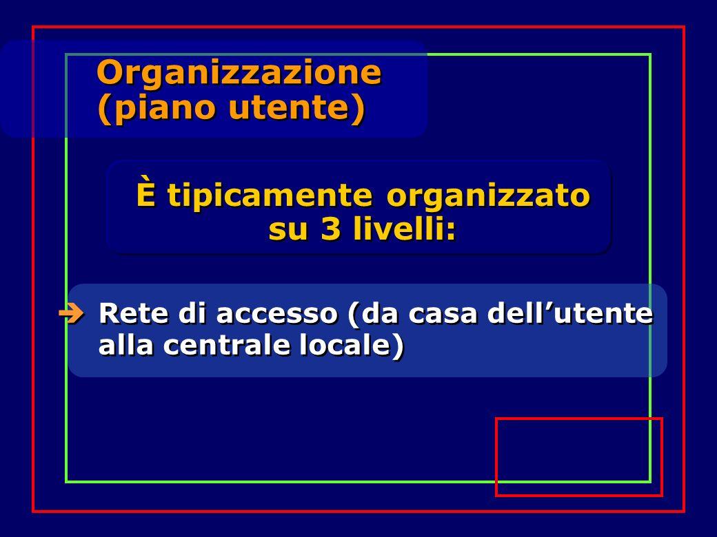 Organizzazione (piano utente) Organizzazione (piano utente) Rete di accesso (da casa dellutente alla centrale locale) È tipicamente organizzato su 3 l