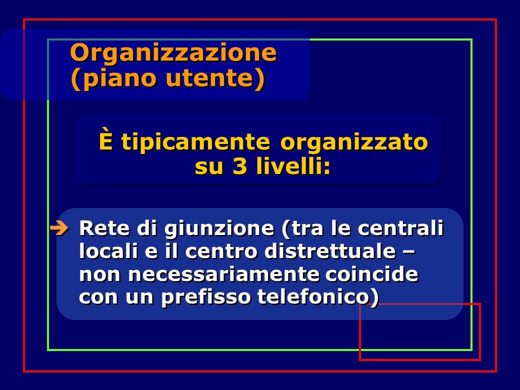 Organizzazione (piano utente) Organizzazione (piano utente) Rete di giunzione (tra le centrali locali e il centro distrettuale – non necessariamente c