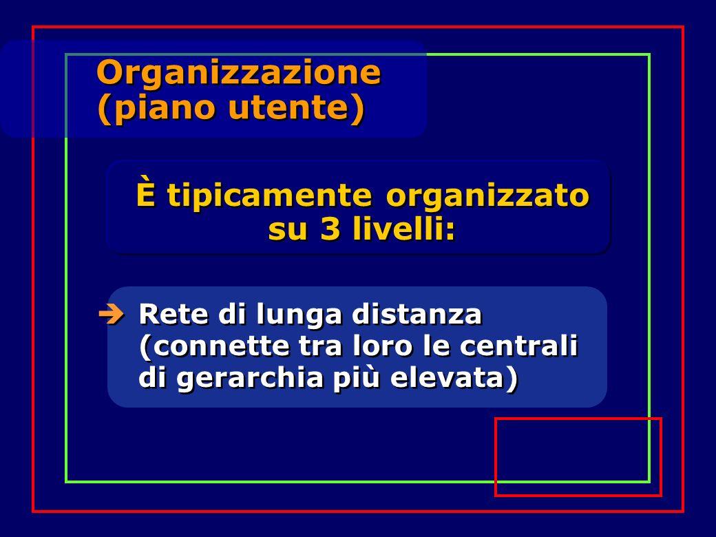 Organizzazione (piano utente) Organizzazione (piano utente) Rete di lunga distanza (connette tra loro le centrali di gerarchia più elevata) È tipicame