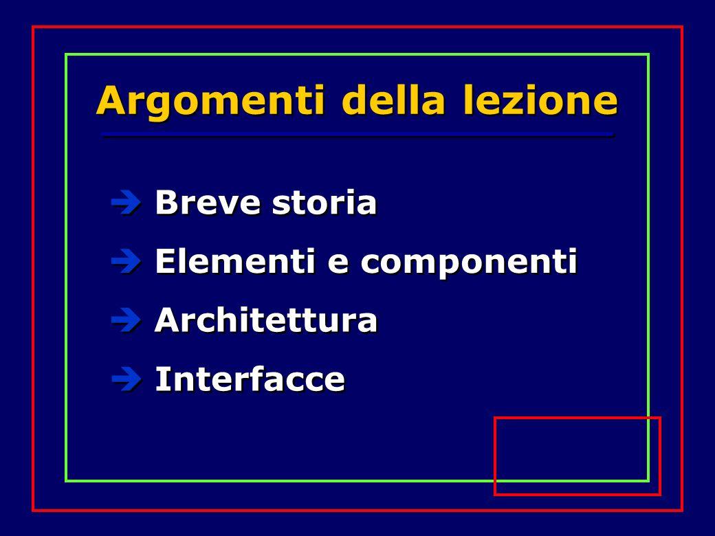 Argomenti della lezione Breve storia Elementi e componenti Architettura Interfacce