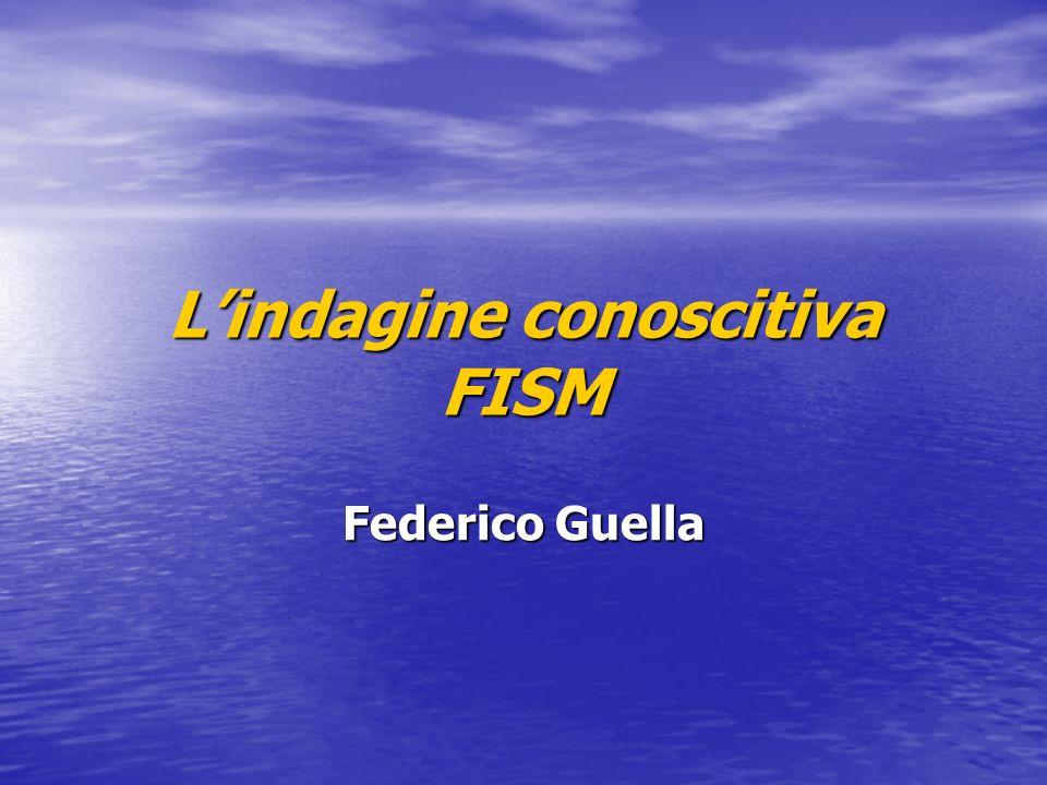 Federico Guella Lindagine conoscitiva FISM