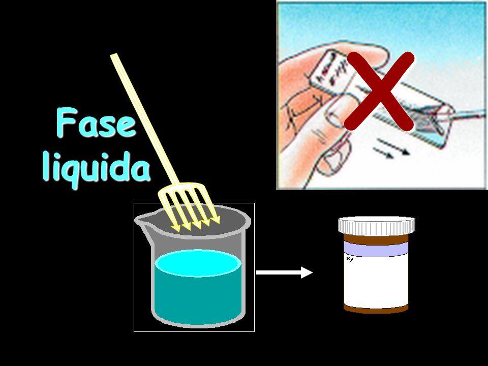Fase liquida X