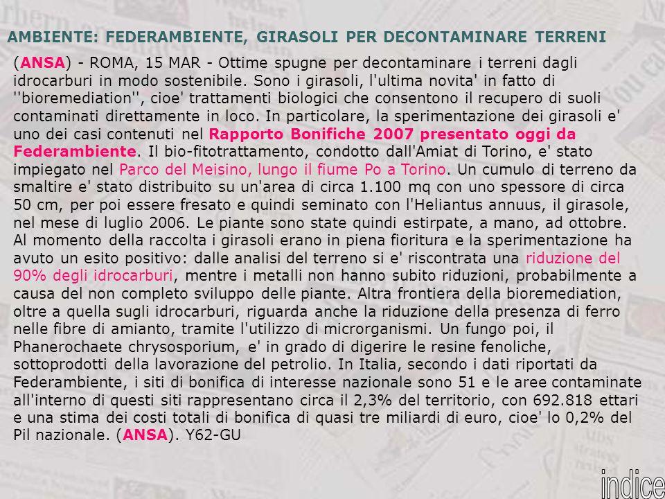 (ANSA) - ROMA, 15 MAR - Ottime spugne per decontaminare i terreni dagli idrocarburi in modo sostenibile. Sono i girasoli, l'ultima novita' in fatto di