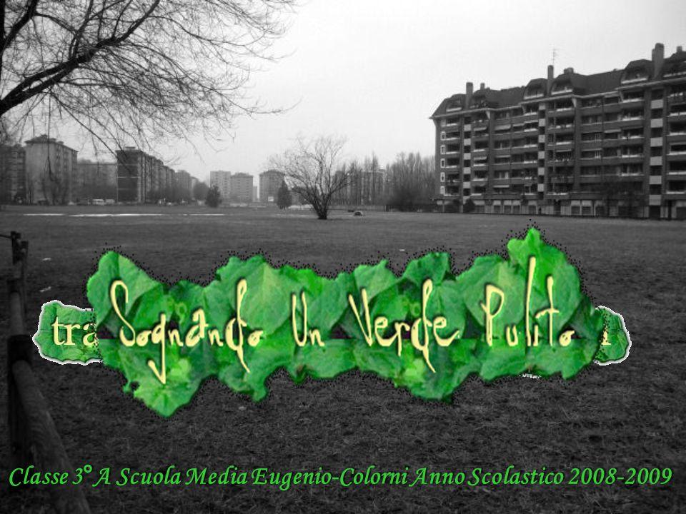 Classe 3°A Scuola Media Eugenio-Colorni Anno Scolastico 2008-2009 Classe 3°A Scuola Media Eugenio-Colorni Anno Scolastico 2008-2009