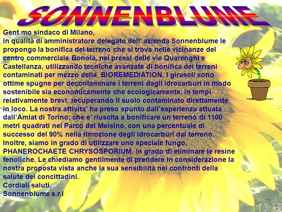 Gent.mo sindaco di Milano, in qualità di amministratore delegato dell azienda Sonnenblume le propongo la bonifica del terreno che si trova nelle vicin