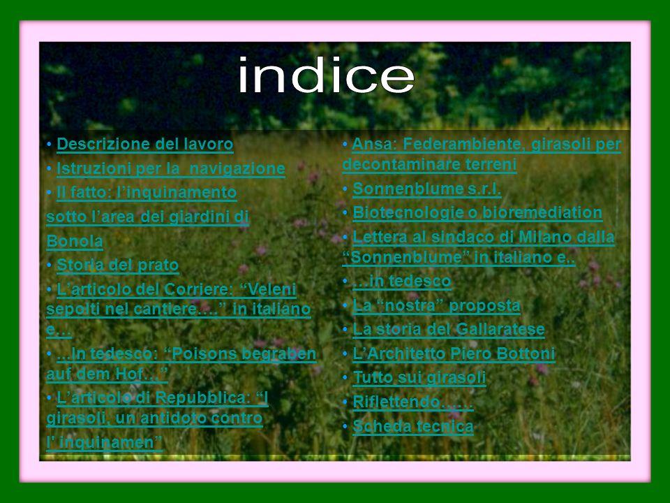 Descrizione del lavoro Istruzioni per la navigazione Il fatto: linquinamento sotto larea dei giardini di Bonola Storia del prato Larticolo del Corrier