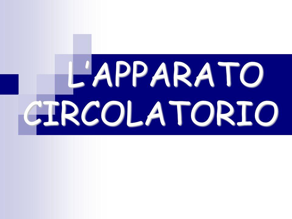 La circolazione doppia Nellessere umano la circolazione è doppia e completa Per circolazione completa intendiamo che per tutto il suo percorso, il sangue ricco di sostanze nutritive e ossigeno è separato da quello povero di ossigeno e con le scorie Per circolazione doppia intendiamo che nel corpo umano, così come negli eterotermi vi sono due circoli: -piccola circolazione (o circolo polmonare) -grande circolazione Indice