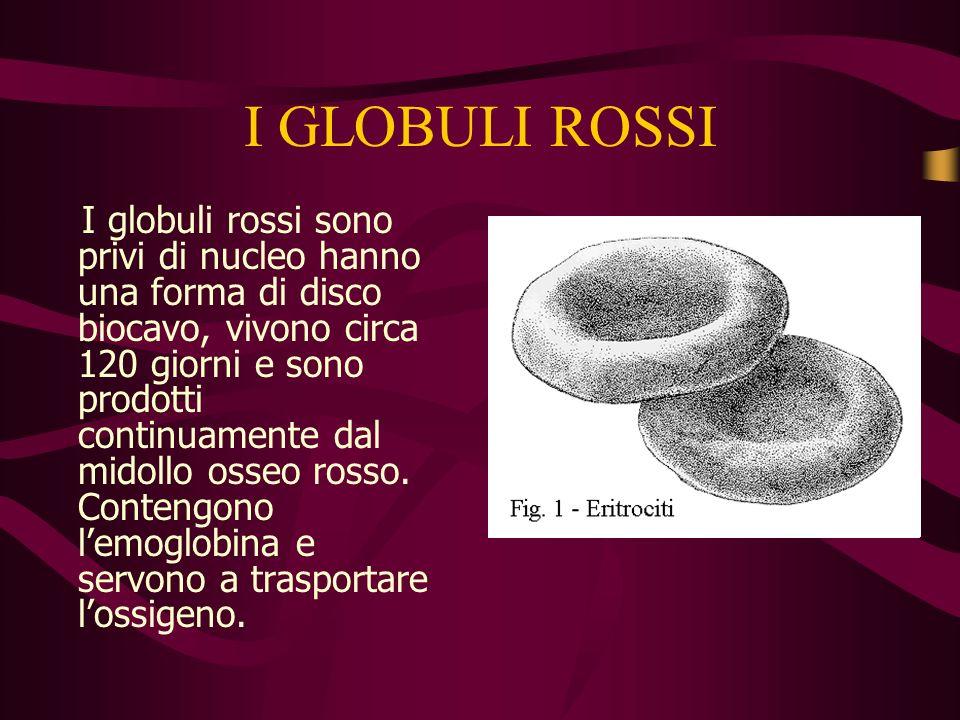 IL SANGUE Il sangue contiene le piastrinele piastrine, il plasmail plasma, i globuli bianchii globuli bianchi, i globuli rossi. Il sangue è di colore