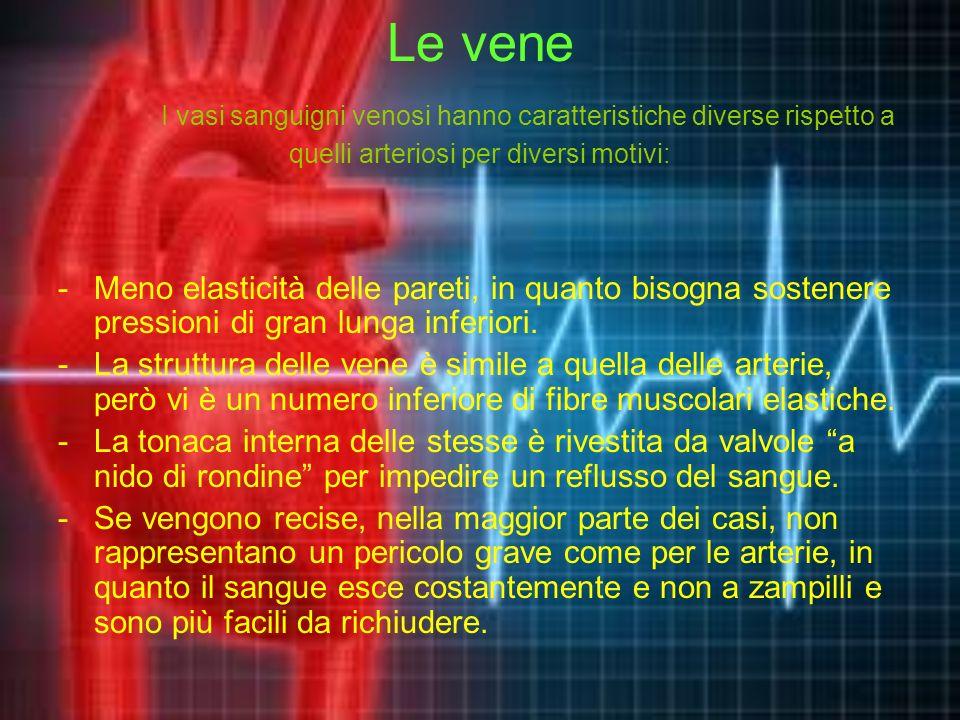Le vene I vasi sanguigni venosi hanno caratteristiche diverse rispetto a quelli arteriosi per diversi motivi: -Meno elasticità delle pareti, in quanto bisogna sostenere pressioni di gran lunga inferiori.