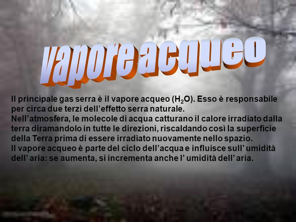 Il principale gas serra è il vapore acqueo (H 2 O). Esso è responsabile per circa due terzi delleffetto serra naturale. Nellatmosfera, le molecole di