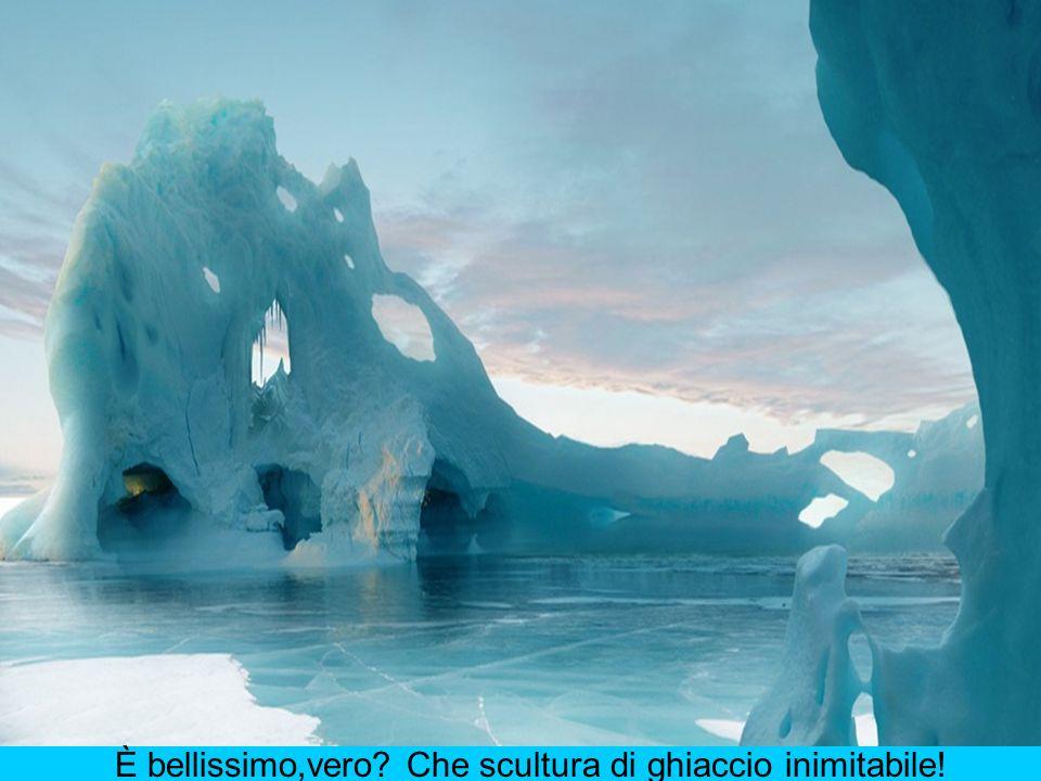 È bellissimo,vero? Che scultura di ghiaccio inimitabile!