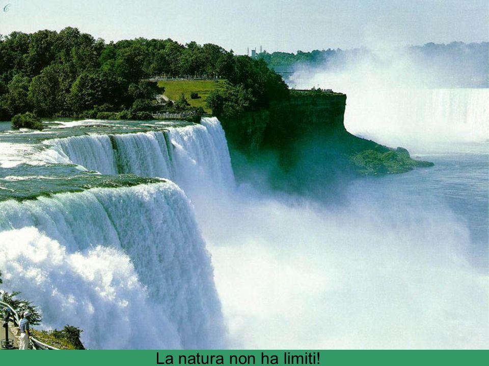 La natura non ha limiti!