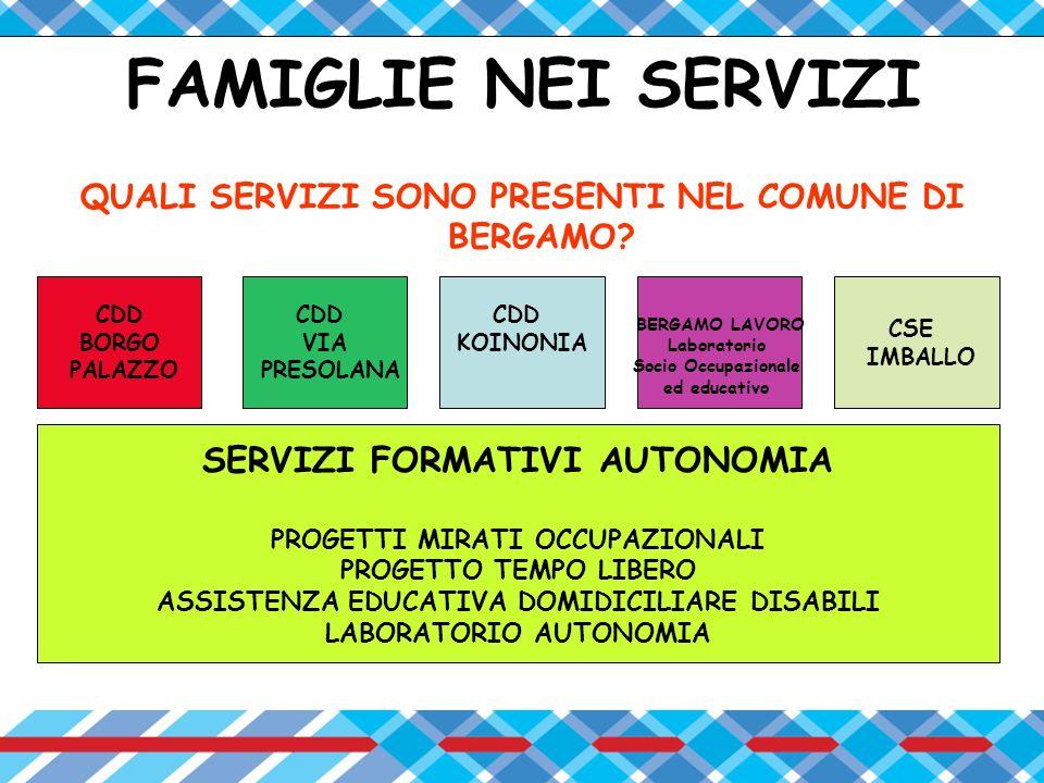 PARTECIPAZIONE DELLE FAMIGLIE NEI SERVIZI LE FAMIGLIE DI TUTTI I SERVIZI PARTECIPANO AL PEI PROGETTO EDUCATIVO INDIVIDUALIZZATO IN ALCUNI SERVIZI LE FAMIGLIE PARTECIPANO ANCHE AL PROGETTO DI SVILUPPO DEL SERVIZIO STESSO MOLTI SERVIZI HANNO PROMOSSO ATTIVITÀ DI INTEGRAZIONE SOCIALE