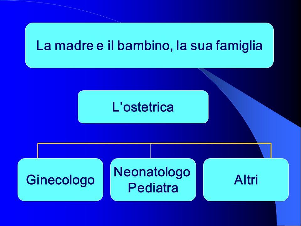 La madre e il bambino, la sua famiglia Lostetrica Ginecologo Neonatologo Pediatra Altri