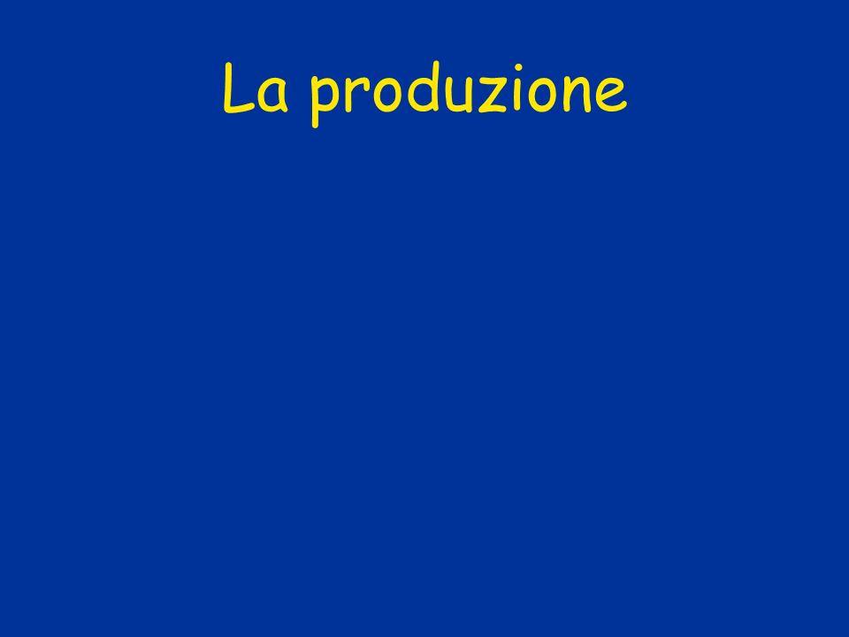 Funzione della produzione La variazione della produzione allincremento dei fattori produttivi (c.d.