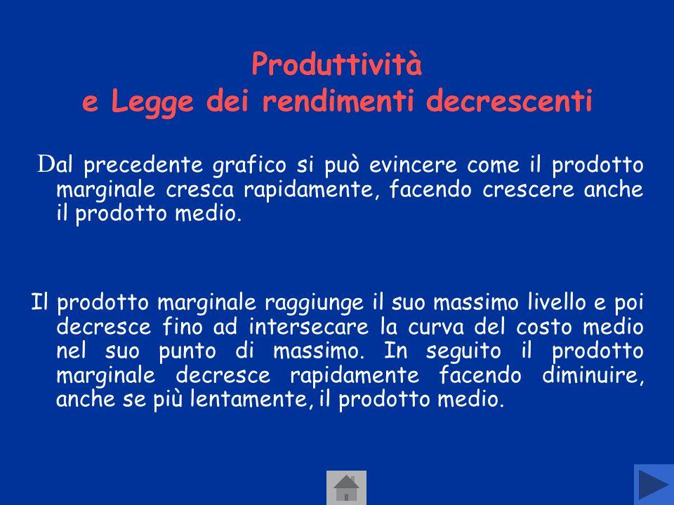 Produttività e Legge dei rendimenti decrescenti