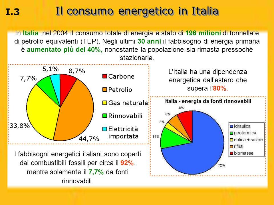 In Italia nel 2004 il consumo totale di energia è stato di 196 milioni di tonnellate di petrolio equivalenti (TEP). Negli ultimi 30 anni il fabbisogno