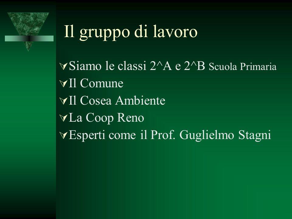 Il gruppo di lavoro Siamo le classi 2^A e 2^B Scuola Primaria Il Comune Il Cosea Ambiente La Coop Reno Esperti come il Prof. Guglielmo Stagni