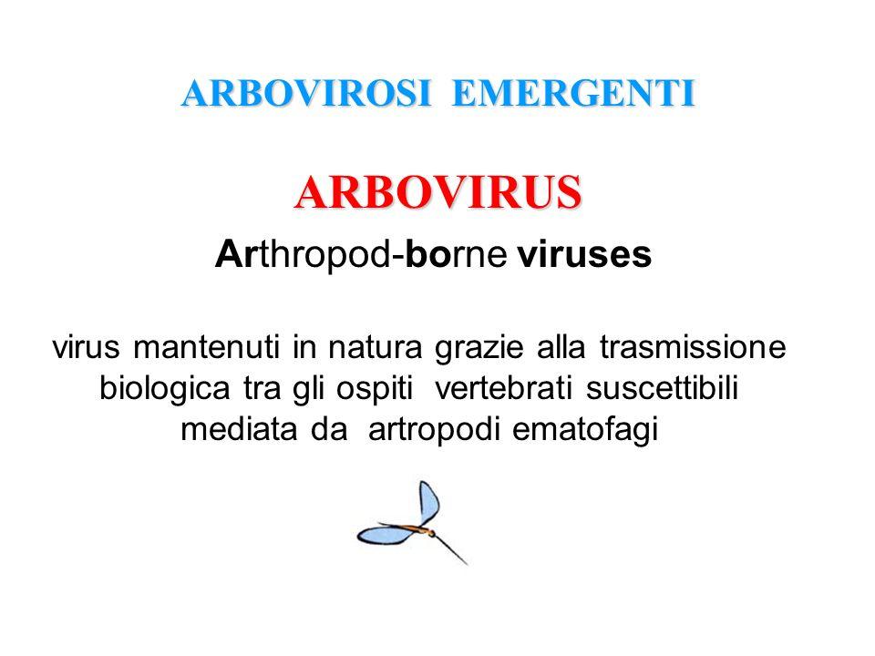 ARBOVIROSI EMERGENTI ARBOVIRUS Arthropod-borne viruses virus mantenuti in natura grazie alla trasmissione biologica tra gli ospiti vertebrati suscetti