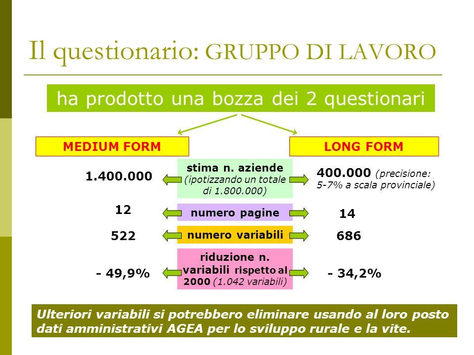Il questionario: GRUPPO DI LAVORO ha prodotto una bozza dei 2 questionari MEDIUM FORMLONG FORM stima n.