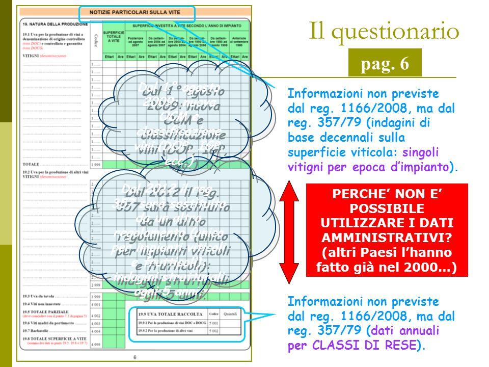 Il questionario pag. 6 Informazioni non previste dal reg.