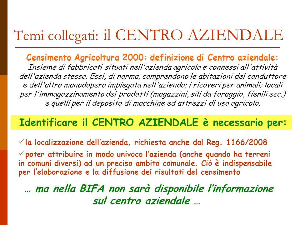 Temi collegati: il CENTRO AZIENDALE Censimento Agricoltura 2000: definizione di Centro aziendale: Insieme di fabbricati situati nell azienda agricola e connessi all attività dell azienda stessa.