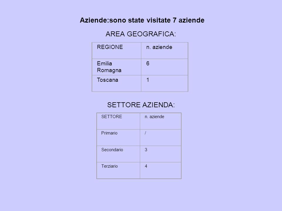 Aziende:sono state visitate 7 aziende AREA GEOGRAFICA: SETTORE AZIENDA: REGIONEn. aziende Emilia Romagna 6 Toscana1 SETTOREn. aziende Primario/ Second