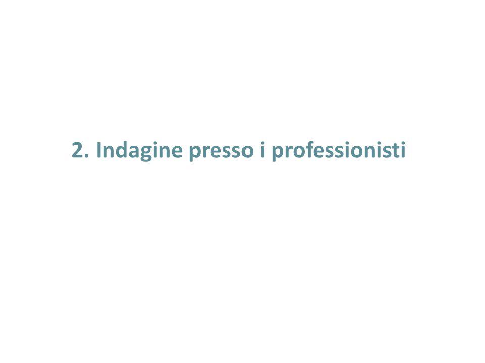 2. Indagine presso i professionisti