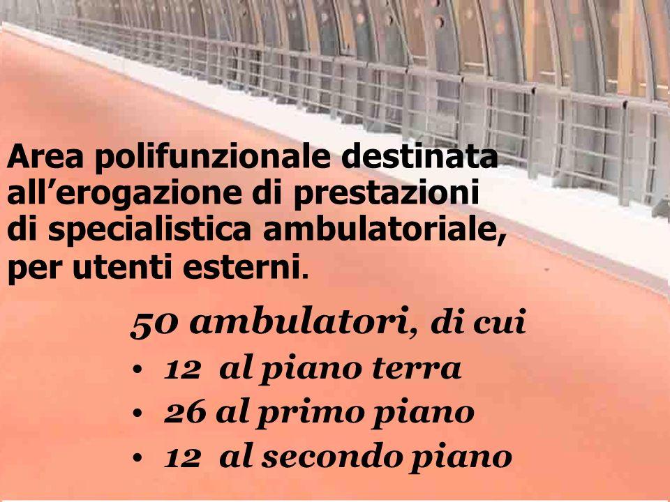 Area polifunzionale destinata allerogazione di prestazioni di specialistica ambulatoriale, per utenti esterni. 50 ambulatori, di cui 12 al piano terra