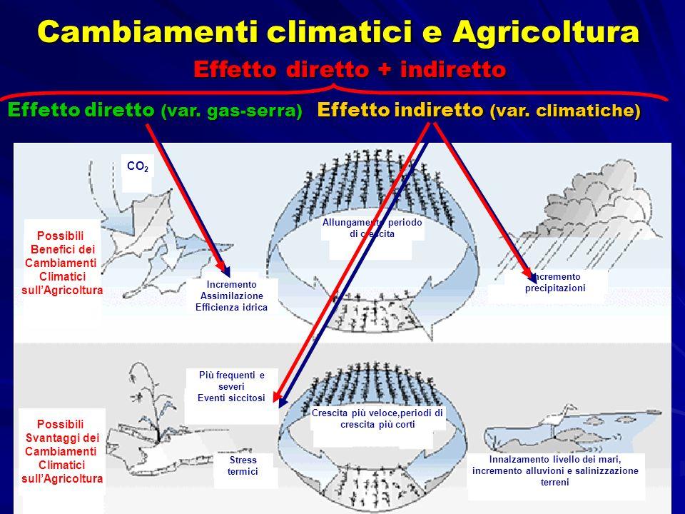 Cambiamenti climatici e Agricoltura CO 2 Possibili Benefici dei Cambiamenti Climatici sullAgricoltura Possibili Svantaggi dei Cambiamenti Climatici su
