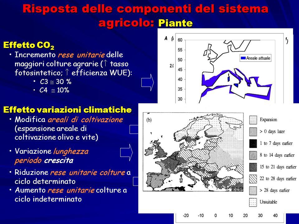 Effetto variazioni climatiche Modifica areali di coltivazione (espansione areale di coltivazione olivo e vite) Effetto CO 2 Incremento rese unitarie d