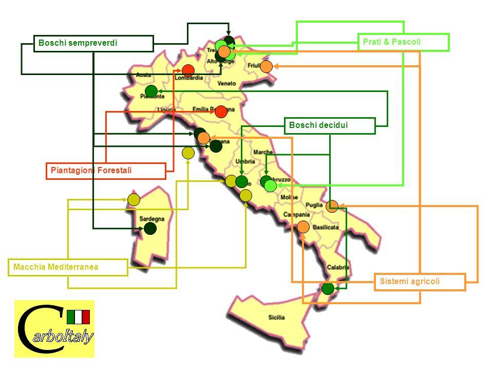 Boschi decidui Sistemi agricoli Boschi sempreverdi Piantagioni Forestali Macchia Mediterranea Prati & Pascoli