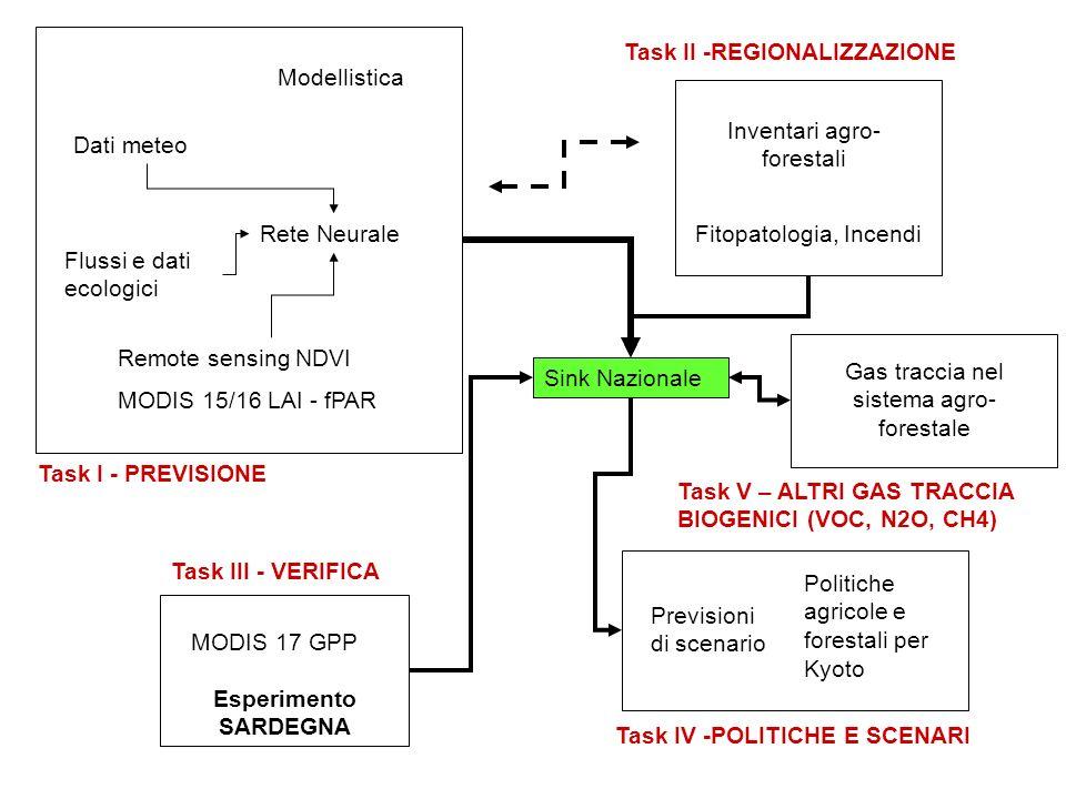 CONCLUSIONI La misura dei flussi di Carbonio è una realtà importante in Italia.