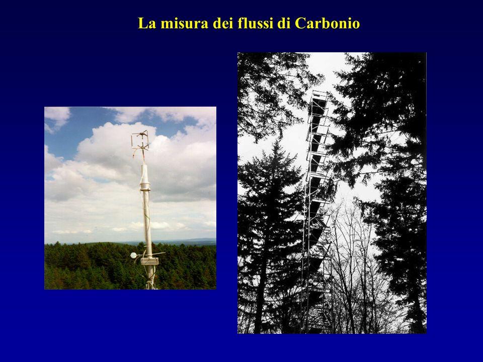 La misura dei flussi di Carbonio