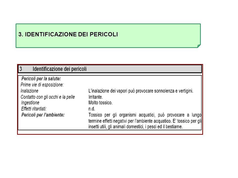 3. IDENTIFICAZIONE DEI PERICOLI